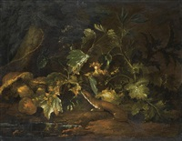 a forest floor with a stoat underneath some foliage, beside a pool of water by niccolino van houbraken