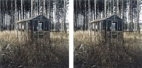 mirrored house diptych by rob fischer