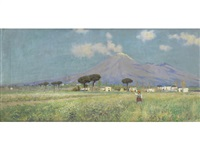 a summer meadow, vesuvius in the distance by horace fisher