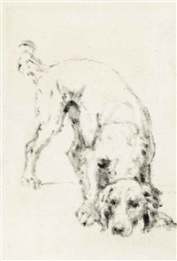 study of a dog; study of plants (2 works) by john white abbott