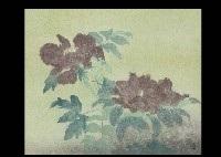 green wind by takashi arai
