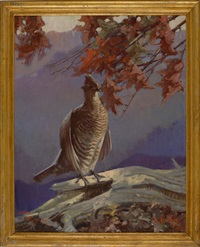 portrait of a ruffed grouse by reginald f. bolles