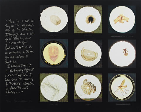 after microscope slides found in freuds collection and a quotation from jacques lacan by susan hiller