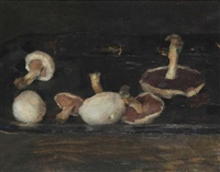 nature morte aux champignons by walter vaes