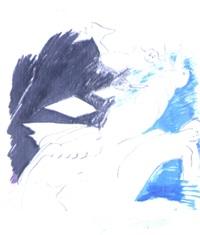 twirly bird by lucio pozzi