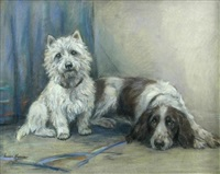 a west highland terrier and a springer spaniel (study) by marion rodger hamilton harvey