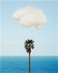 brain/cloud (with seascape and palm tree) by john baldessari