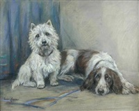 study of a west highland terrier and a springer spaniel by marion rodger hamilton harvey