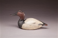 bold canvasback drake by lemuel t. and stephen ward