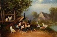 hühnerhof mit pfau by otto scheuerer