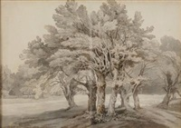 a study of a group of trees in parkland by john white abbott