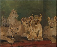 lion cubs by charles walter simpson