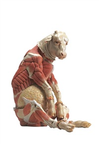 epidermis of setting bull by cao hui