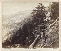 valley of the yo-semite, california by eadweard muybridge