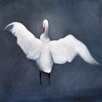 a swan by eric hynynen