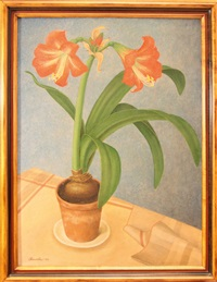 stilleben mit amaryllis by will ameln