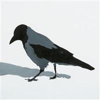 bird walking by eric hynynen