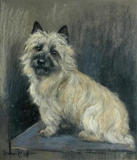 a cairn terrier by marion rodger hamilton harvey