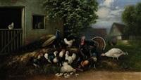 pfau, truthahn und hühner mit küken auf dem misthaufen by otto scheuerer