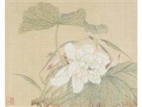 flowers by tang shishu
