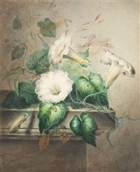 still life with convolvulus and a ladybird by james holland