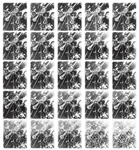 continuous reproduction 25 times (25 works) by zhang peili