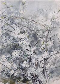alberi in fiore by aldo raimondi