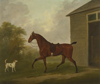 a saddled bay hunter with a foxhound, outside a stable by john nost sartorius