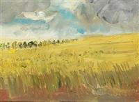 rapsfeld (karwe) by rainer fetting