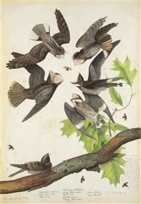 night hawks by walton ford