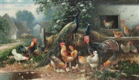 chickens, pheasant and turkey in the yard by otto scheuerer
