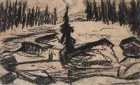 solitary spruce on a field by carl fredrik hill