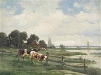 kühe und fischerboote am niederrhein by reinhold rasenberger