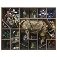 rhinoceros in the shelf by kama takumi
