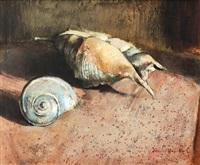 two shells by irmin henkel