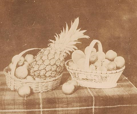 a fruit piece pl xxiv from the pencil of nature by william henry fox talbot