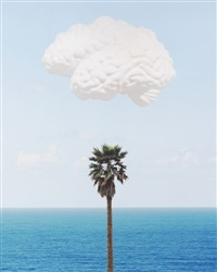brain / cloud (with seascape and palm tree) by john baldessari