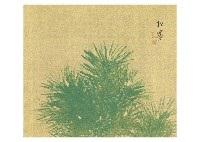 young pine by shoen uemura