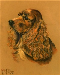 spaniel by gladys emerson cook