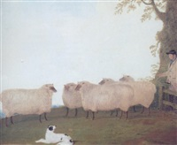 shepherd and sheepdog with sheep in a field by g. b. newmarch