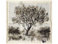 tree by william kentridge