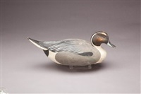 pintail drake by lemuel t. and stephen ward