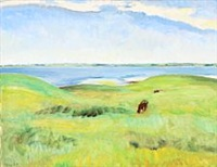landscape with a view over lammefjorden by sigurd swane