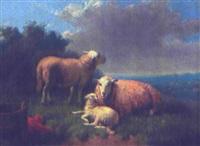landskab med får by jurjen de jong