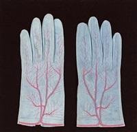 handschuhpaar by meret oppenheim
