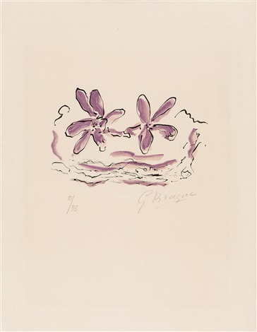 deux fleurs violettes s 32 aus lettera amorosa by georges braque