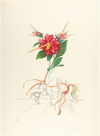 dahlia aus: flordali (flora dalinae) by salvador dalí