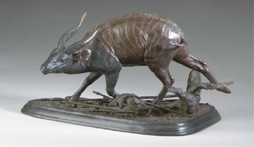 a male buck by douglas van howd