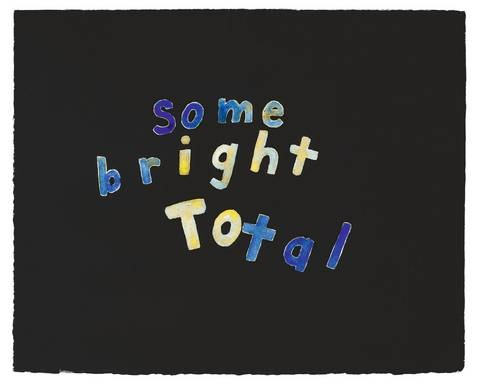 some bright total by roni horn