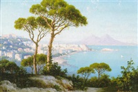 the bay of naples looking towards mount vesuvius by domenico ammirato